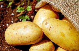 La pomme de terre n'a pas vraiment sa place dans une alimentation saine
